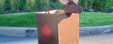 """TWO MEN AND A TRUCK® Halloween """"Boxtume"""" ideas Part 1: Canadian Moose"""