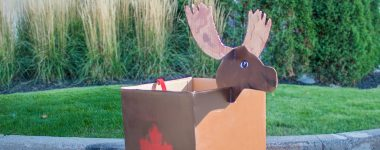 TWO MEN AND A TRUCK® Canadian Moose Boxtume